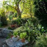 Abelos Villa - Garden