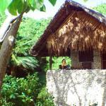 Beachfront Lodge